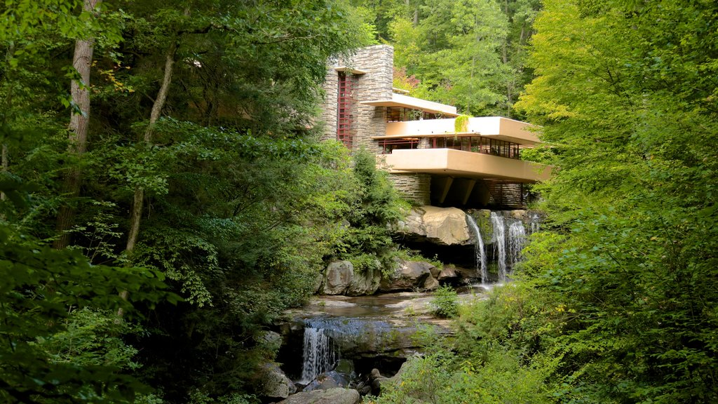 Fallingwater which includes forests, modern architecture and a river or creek