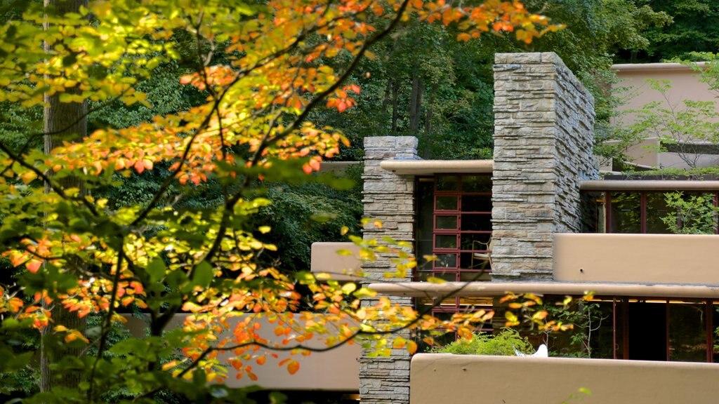 Fallingwater mostrando los colores del otoño, arquitectura moderna y escenas forestales