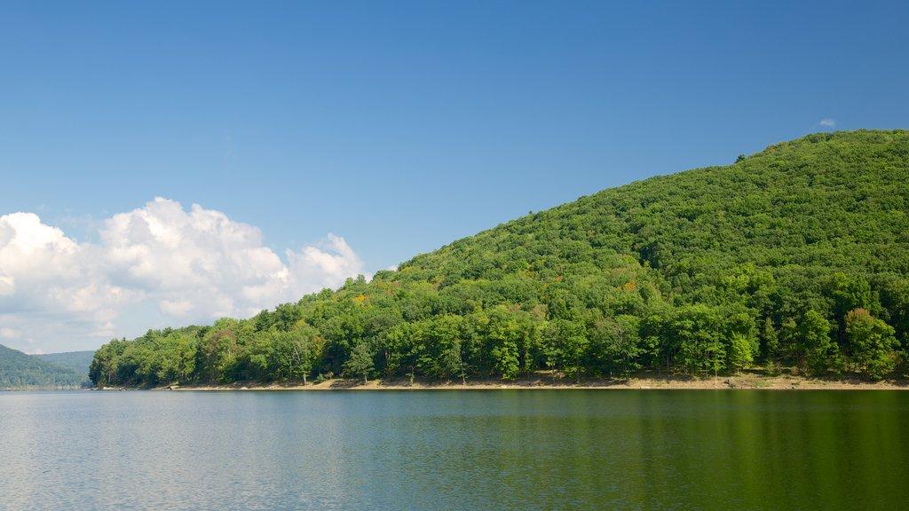 Northwest Pennsylvania showing general coastal views, island views and a sandy beach