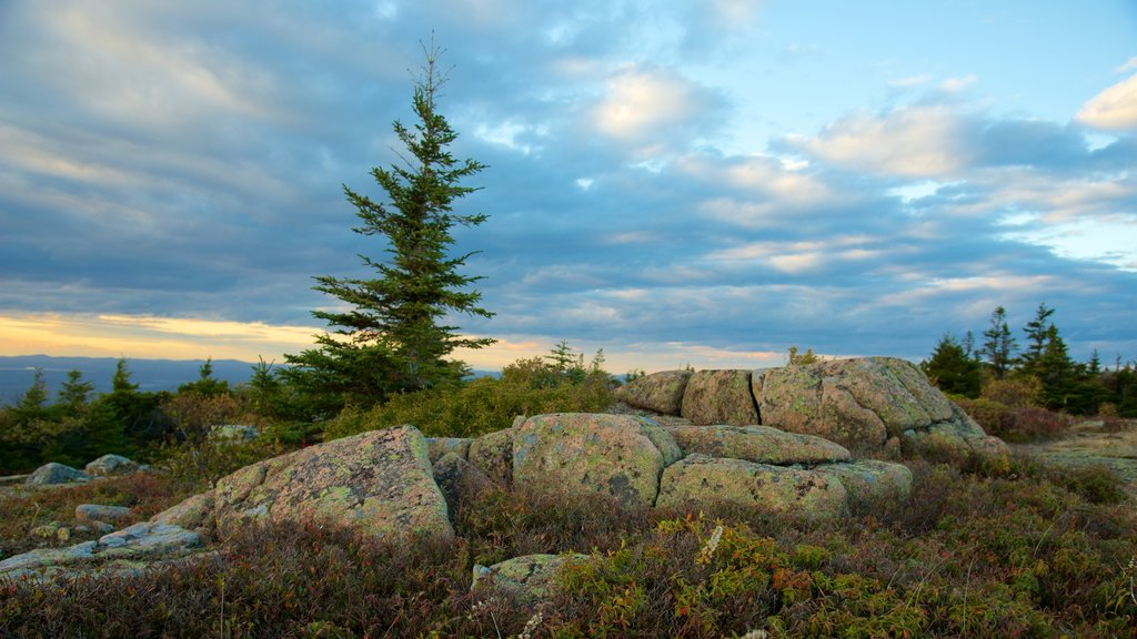 Cadillac Mountain featuring landscape views