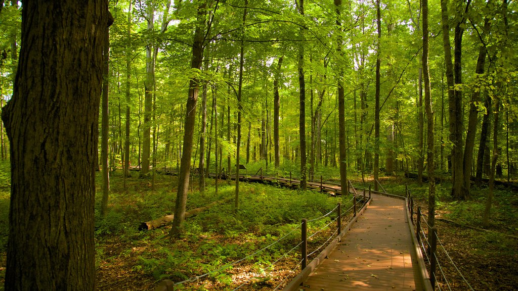 Saratoga National Historical Park showing a garden