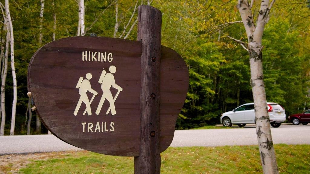 Maine showing signage