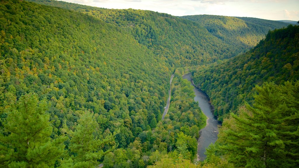 Pine Creek Gorge which includes landscape views, tranquil scenes and a river or creek