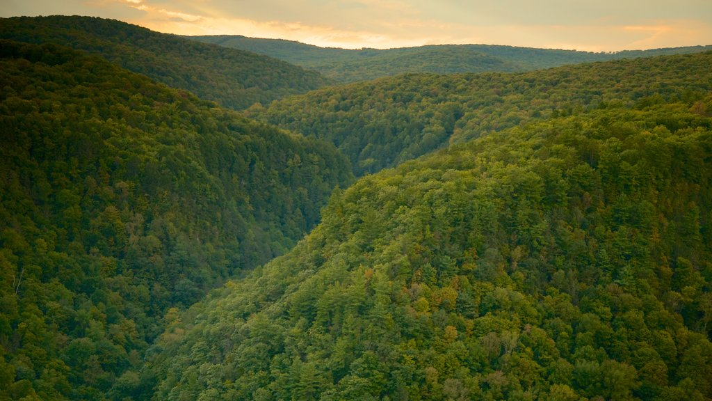 Pine Creek Gorge featuring tranquil scenes, landscape views and a sunset