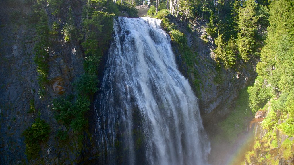 Narada Falls which includes a waterfall