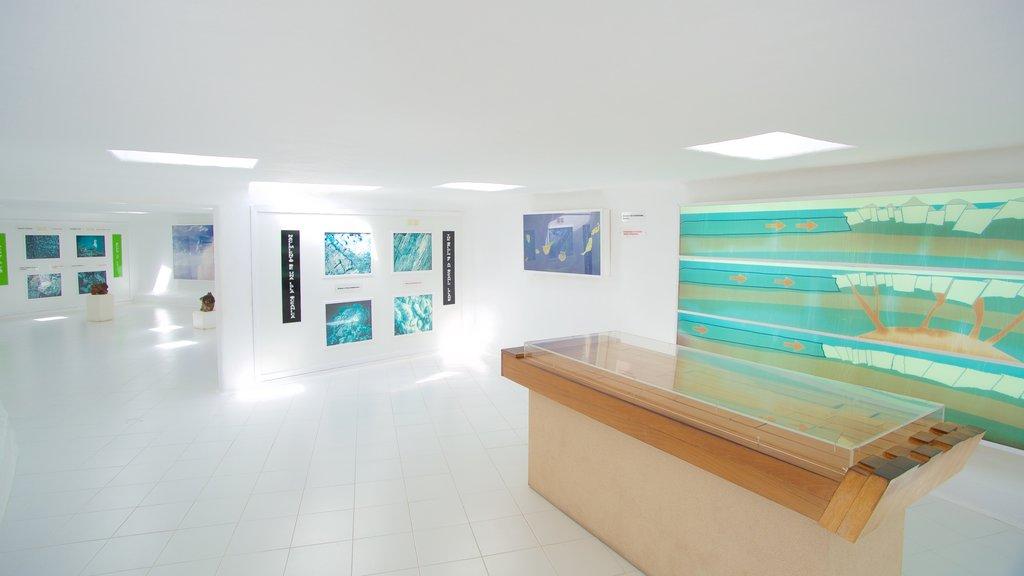 Jameos del Agua featuring art and interior views