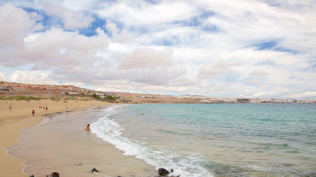 Puerto del Rosario featuring general coastal views, a beach and swimming