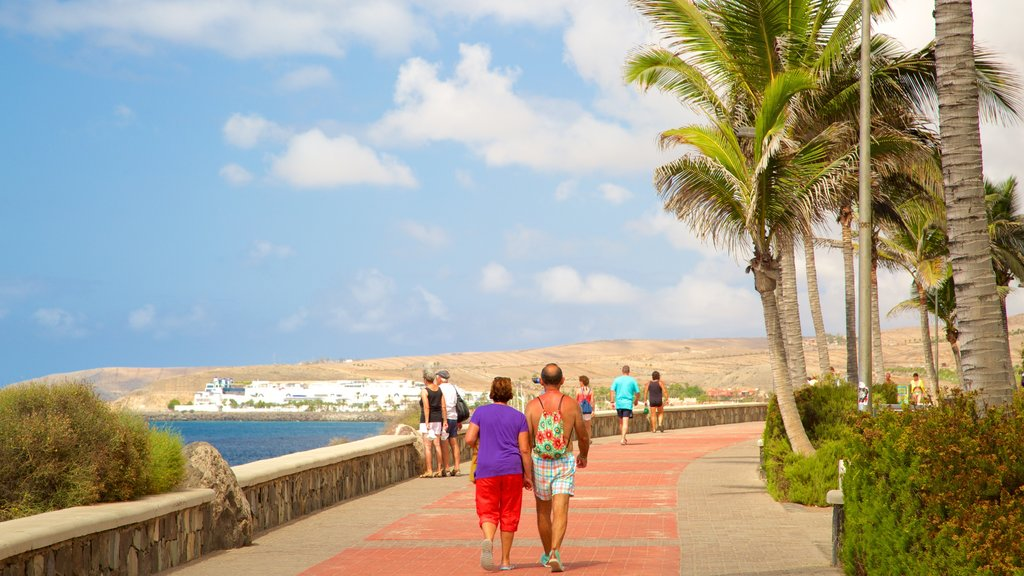 Maspalomas which includes tropical scenes and general coastal views as well as a couple
