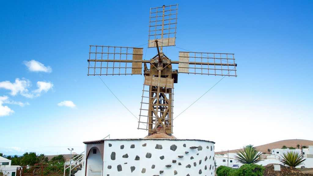 Teguise featuring a windmill