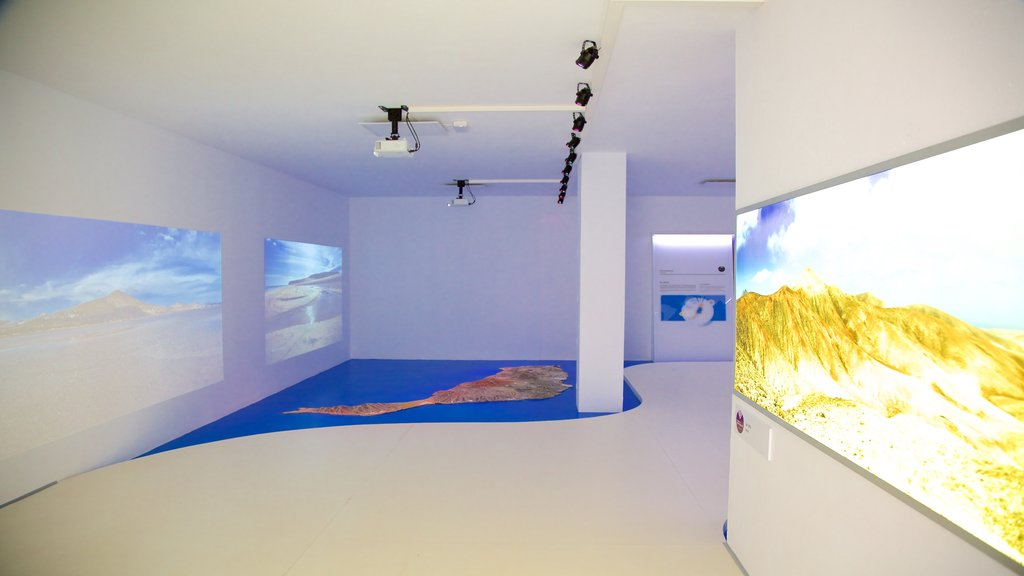 Antigua showing art and interior views