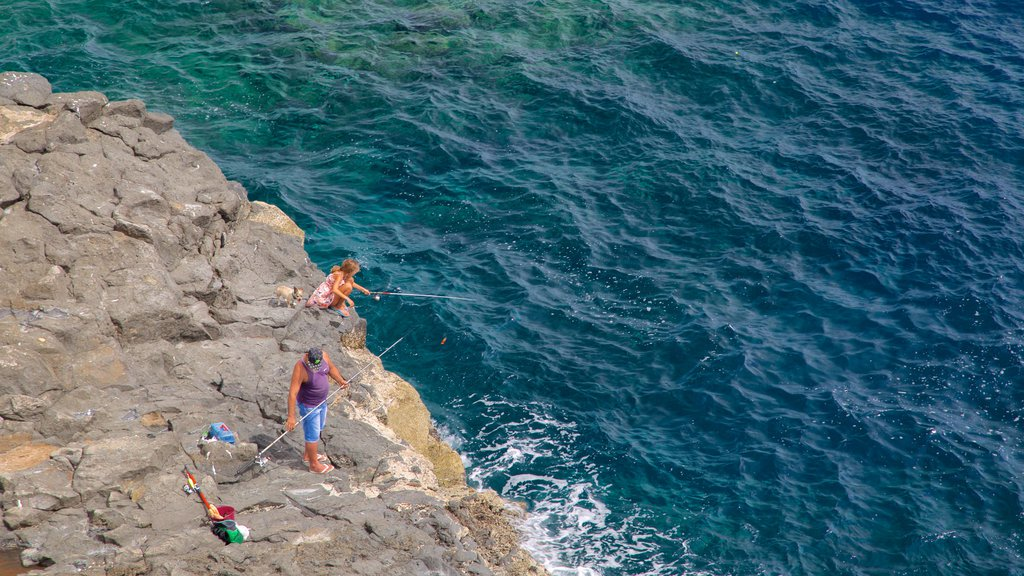Costa de Antigua featuring rocky coastline and fishing
