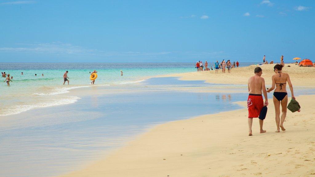 Jandia Beach showing a sandy beach, general coastal views and swimming