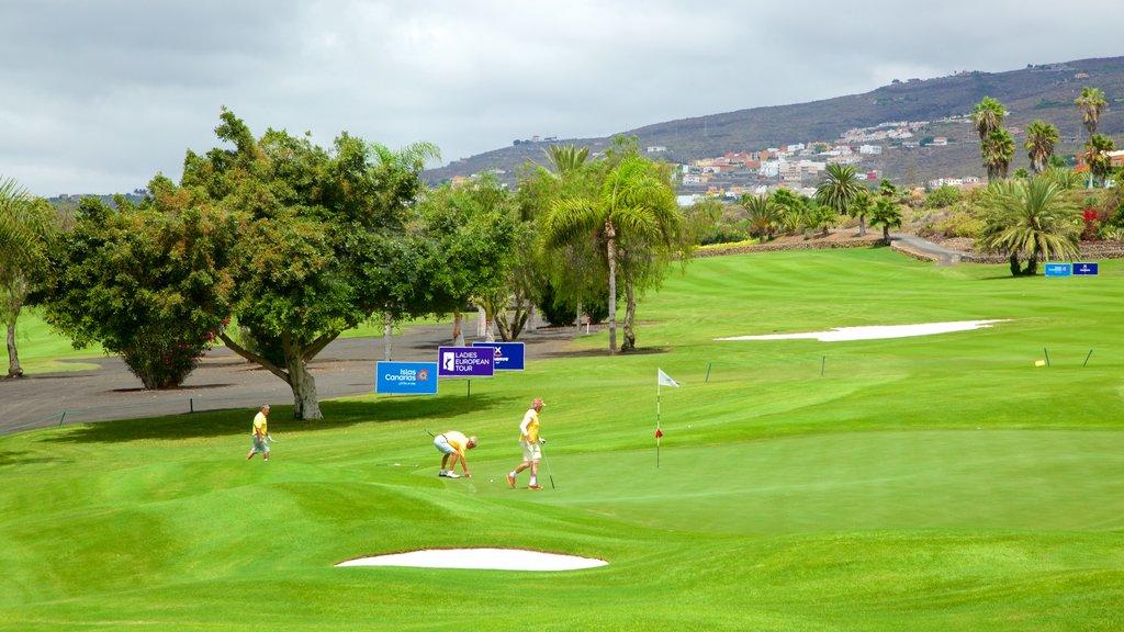 Golf Costa Adeje which includes golf