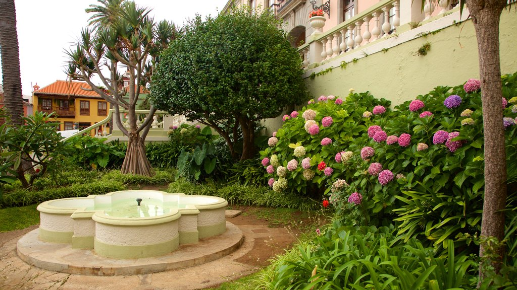 La Orotava which includes a fountain and flowers