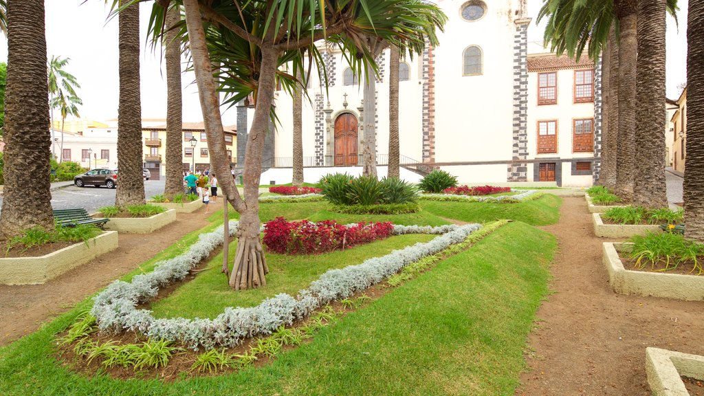 La Orotava showing flowers and a garden