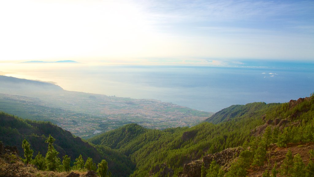 Santiago del Teide showing a sunset, forest scenes and general coastal views