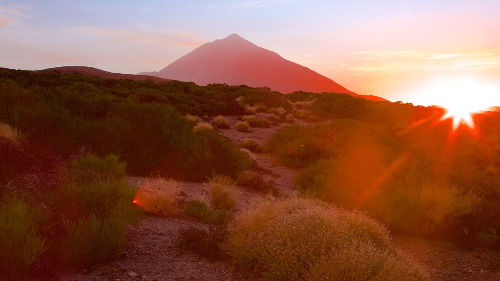 Santiago del Teide showing a sunset, mountains and tranquil scenes
