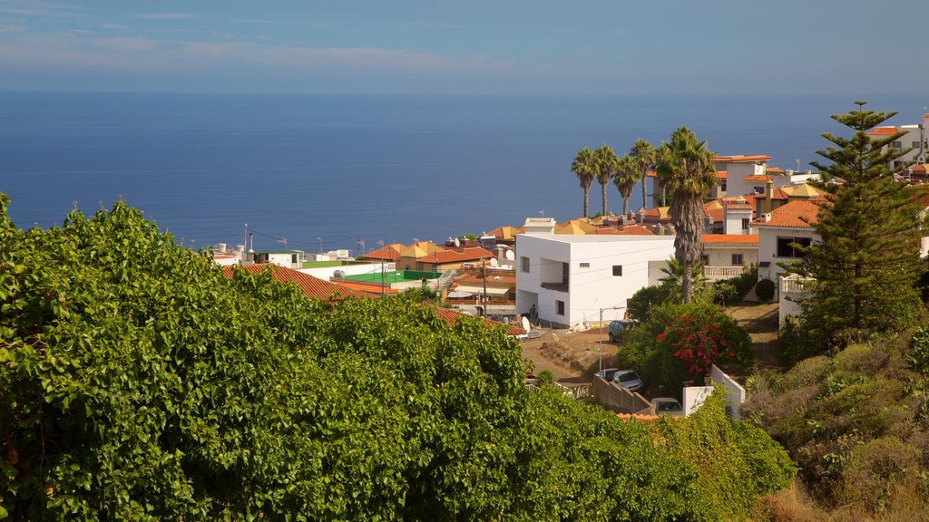 Sauzal featuring a coastal town and general coastal views