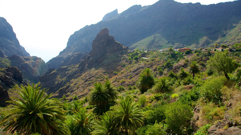 Masca which includes mountains