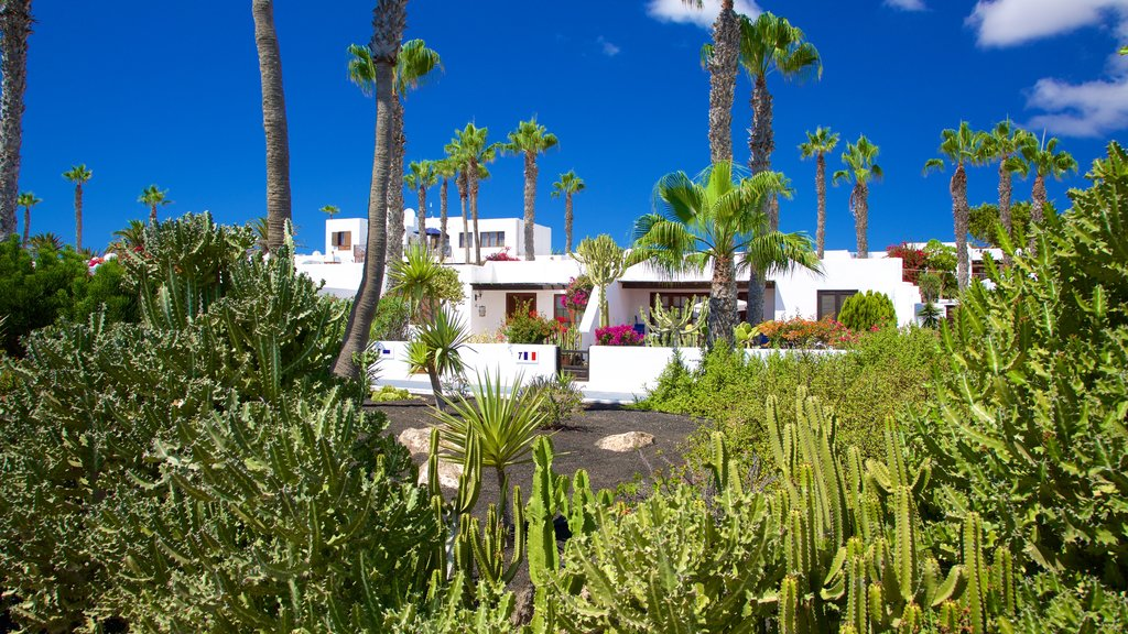 Playa Blanca showing a park and a house