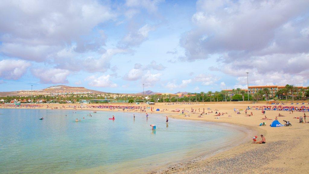 Caleta de Fuste showing general coastal views, swimming and a beach