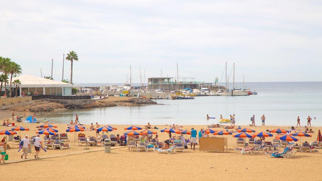 Caleta de Fuste which includes a sandy beach, general coastal views and a bay or harbor