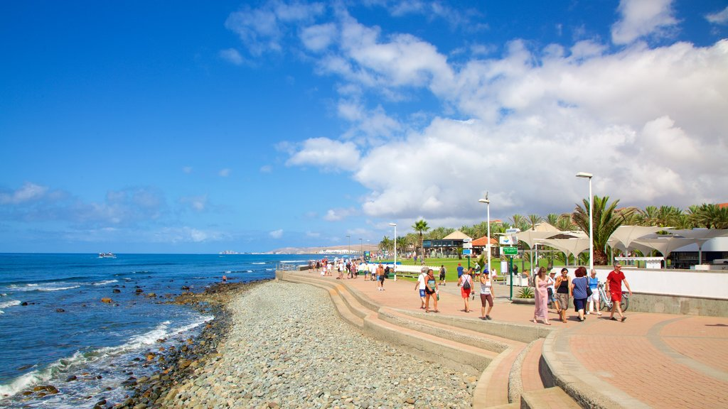Maspalomas which includes a pebble beach and general coastal views