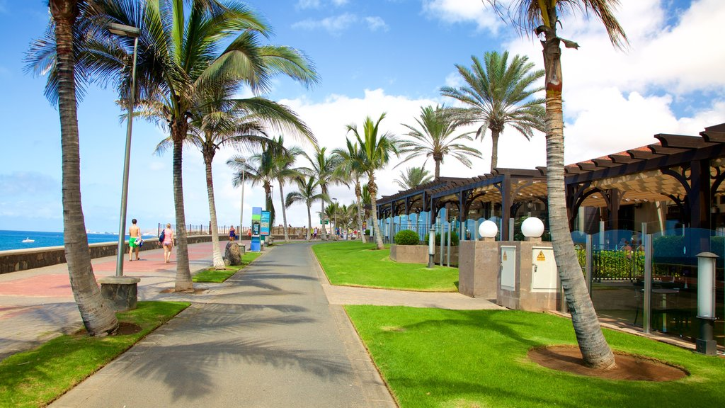 Maspalomas which includes tropical scenes and a coastal town