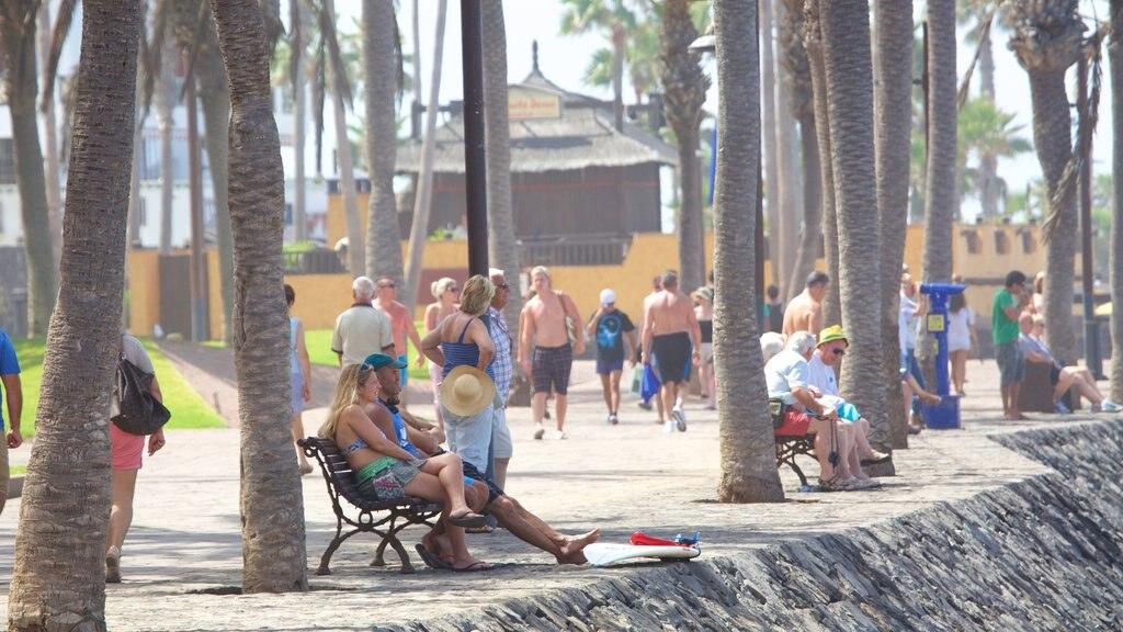 Playa de las Americas showing general coastal views