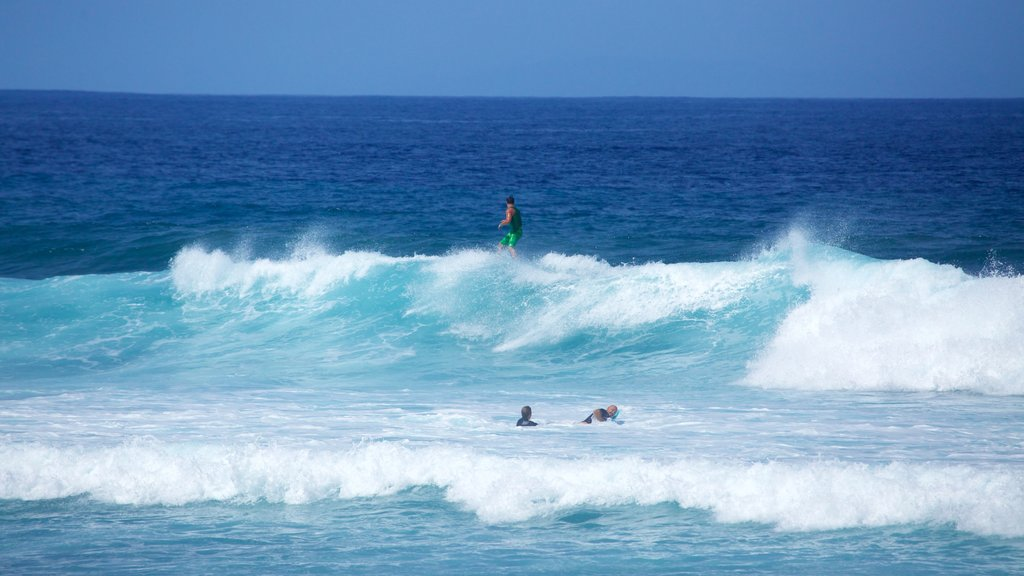 Playa de las Americas which includes waves and surfing