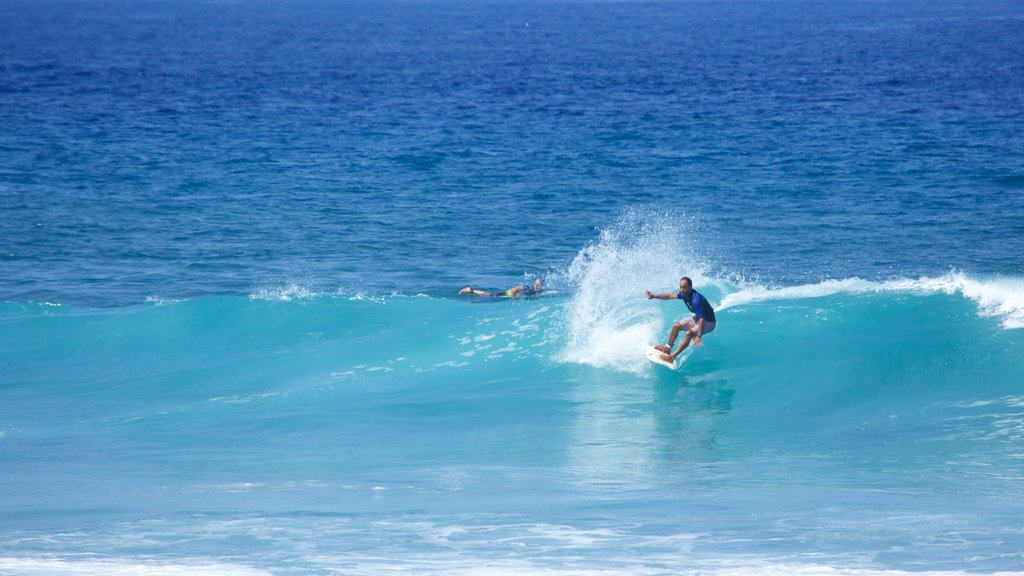 Playa de las Americas featuring surfing and surf as well as an individual male