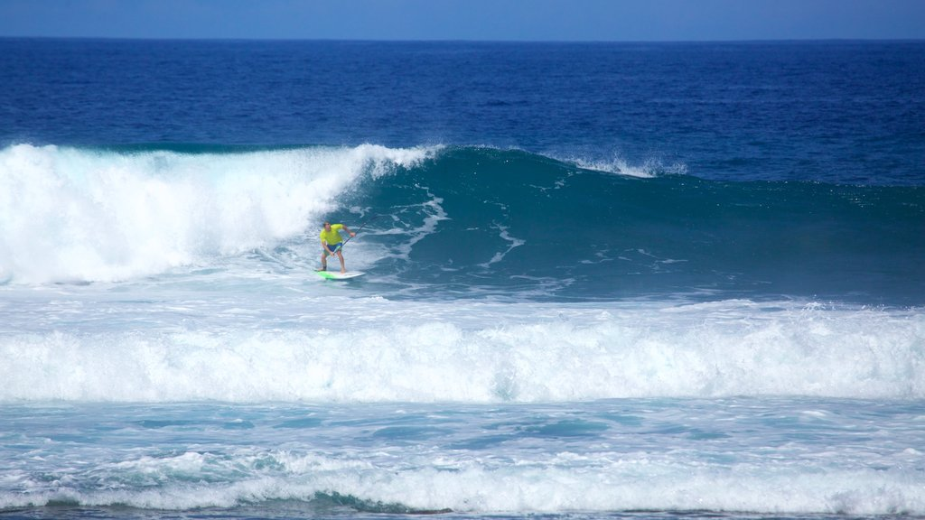 Playa de las Americas which includes surf and surfing as well as an individual male