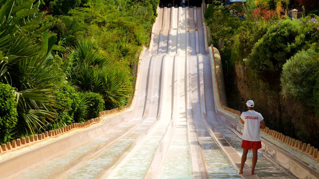 Siam Park featuring a waterpark