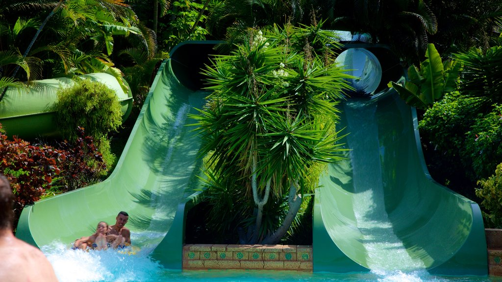 Siam Park which includes a waterpark as well as an individual male