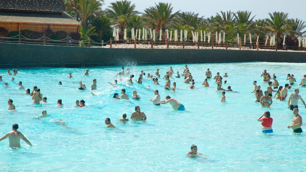 Siam Park which includes a waterpark and swimming as well as a large group of people