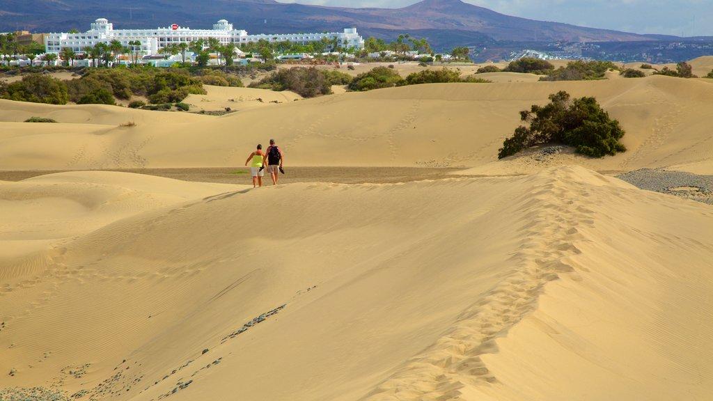 Maspalomas Dunes which includes desert views