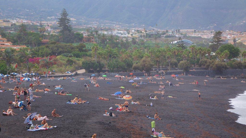 Garden Beach showing general coastal views