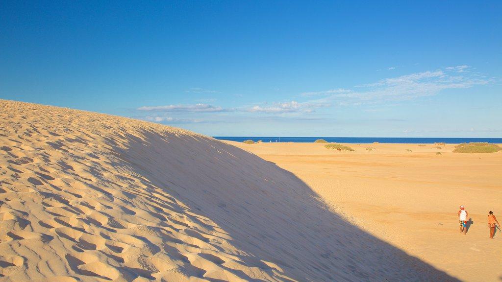 La Oliva showing a beach