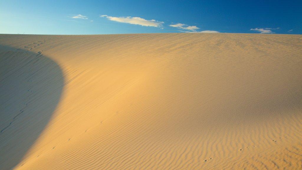 La Oliva featuring a sandy beach