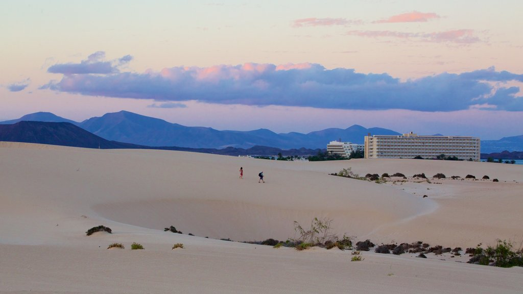 La Oliva which includes night scenes, mountains and a sandy beach