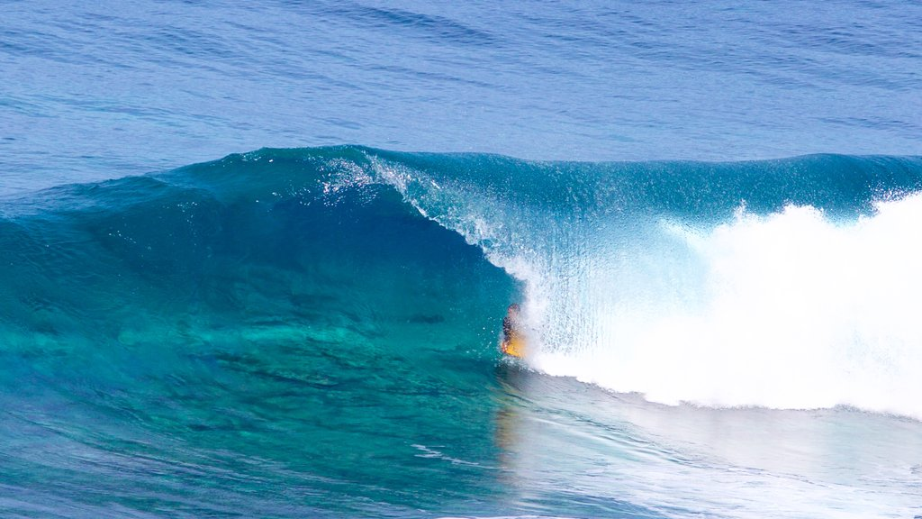 Caleta de Arriba showing surf, surfing and general coastal views