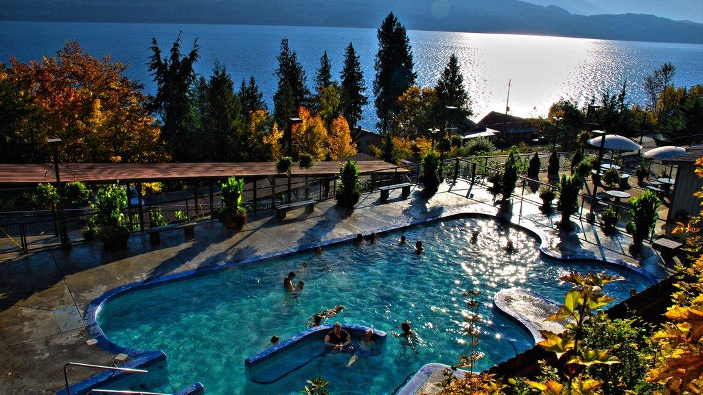 Nelson ofreciendo hojas de otoño, un lago o abrevadero y una alberca