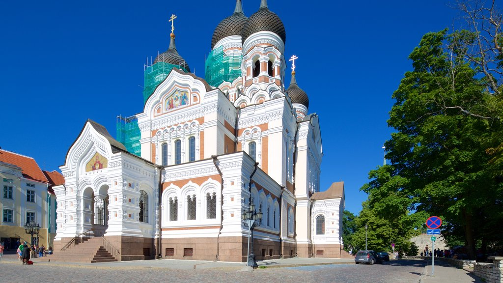 Alexander Nevsky Cathedral showing a church or cathedral
