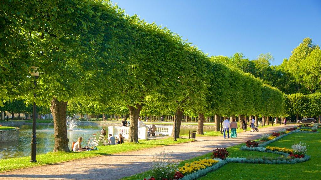 Tallinn featuring a park and a fountain