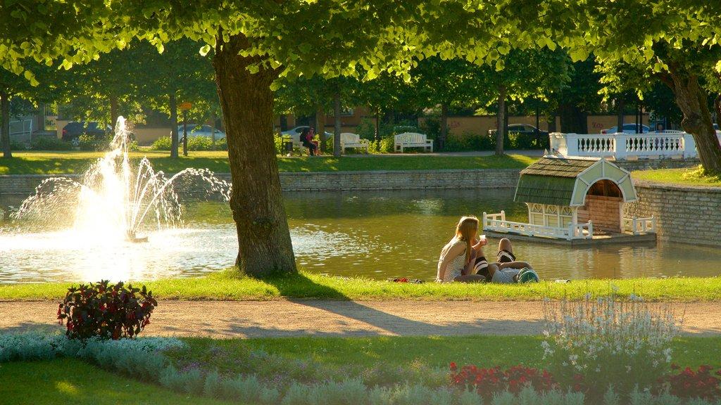 Kadrioru Park featuring a park, a pond and a fountain