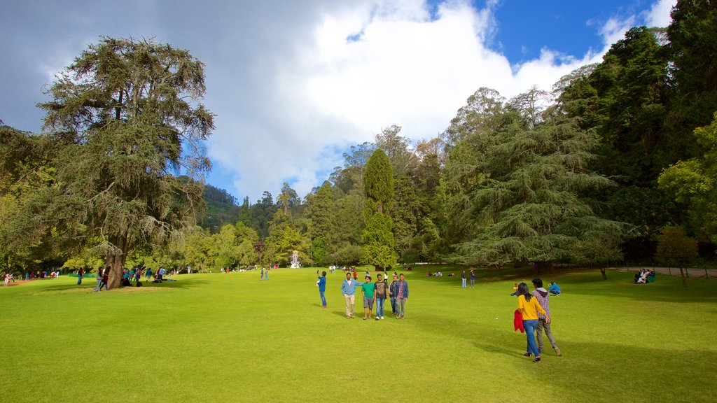 Botanical Gardens featuring a park