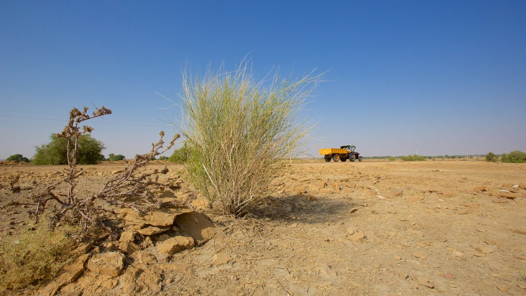 Desert National Park showing tranquil scenes
