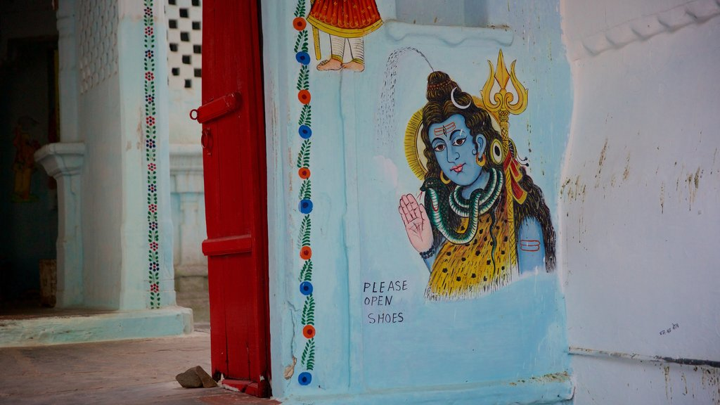Udaipur featuring outdoor art and art