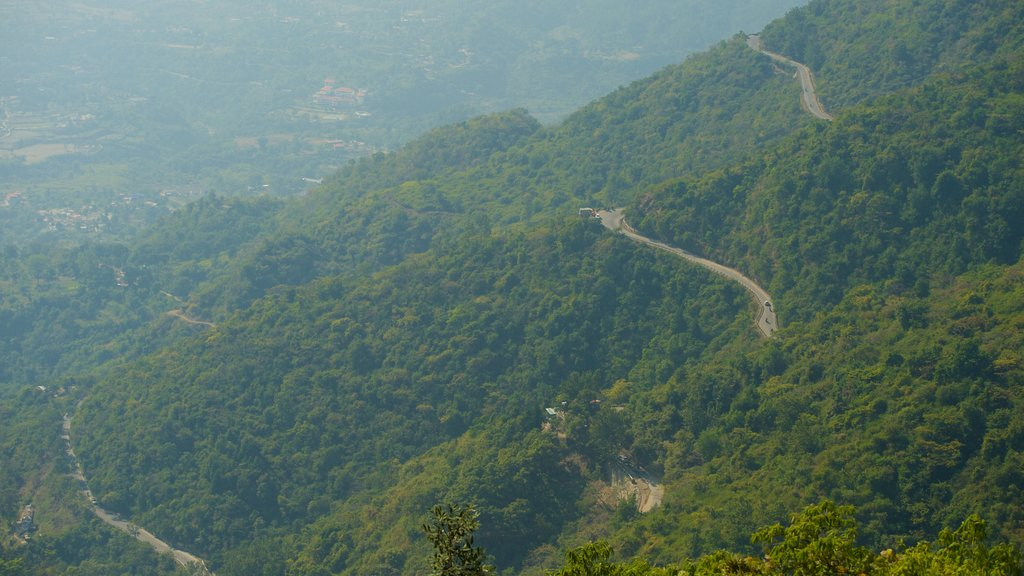 Mussoorie showing tranquil scenes
