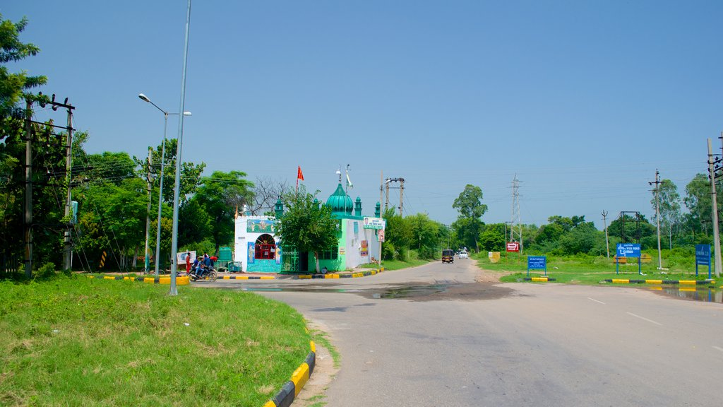 Panchkula showing forest scenes